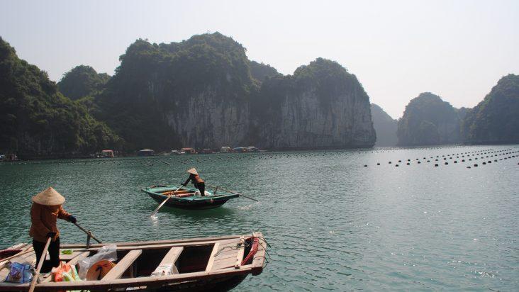 Scoprire il Vietnam e il suo tè ai fiori di loto